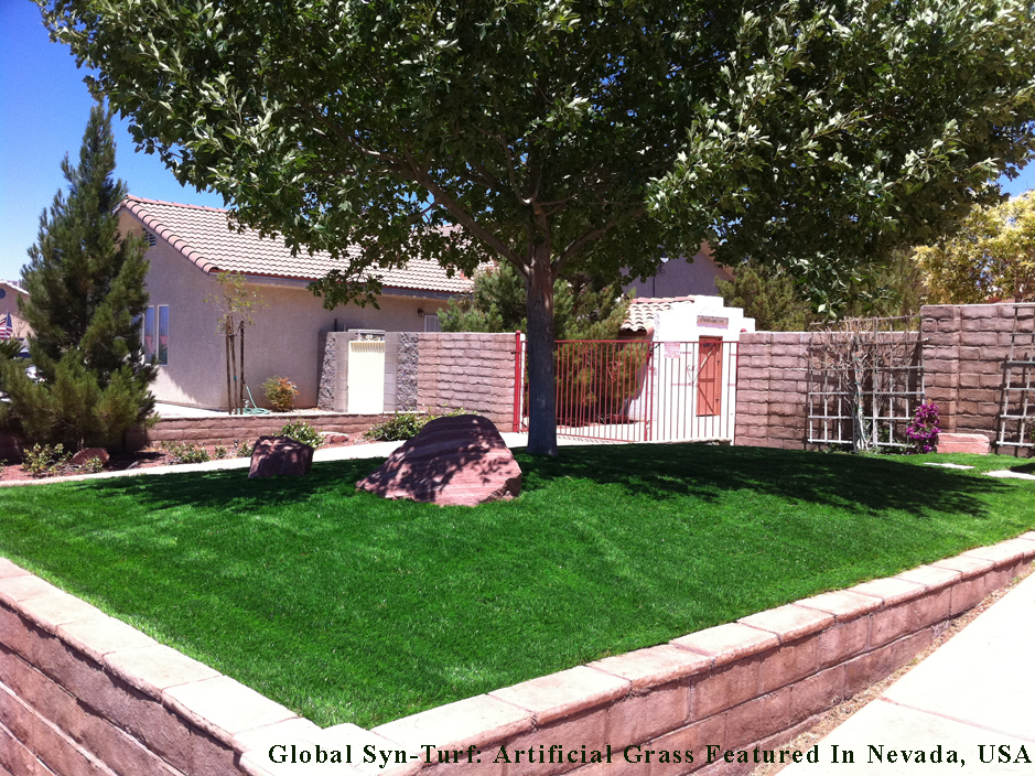 Artificial Grass Allen Park Michigan Home And Garden Front Yard