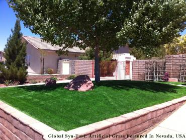 Artificial Grass Photos: Artificial Grass Allen Park, Michigan Home And Garden, Front Yard Design