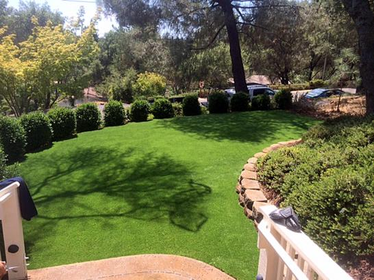 Artificial Grass Photos: Artificial Grass Beverly Hills, Michigan Lawn And Landscape, Backyard Landscape Ideas