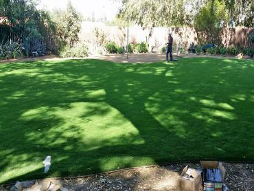 Artificial Grass Photos: Artificial Grass Carpet Byron Center, Michigan Gardeners, Small Backyard Ideas