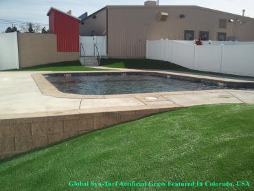 Artificial Grass Photos: Artificial Grass Carpet Center Line, Michigan Landscaping, Above Ground Swimming Pool