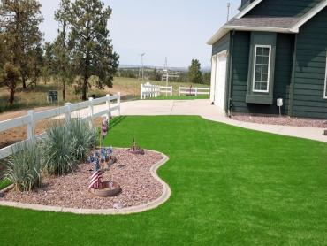Artificial Grass Photos: Artificial Grass Carpet Coldwater, Michigan Landscaping, Landscaping Ideas For Front Yard