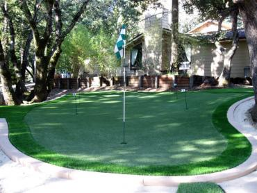 Artificial Grass Photos: Artificial Grass Carpet Edmore, Michigan Landscaping Business, Backyard Landscape Ideas