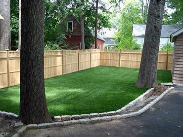 Artificial Grass Photos: Artificial Grass Carpet Freeport, Michigan Dog Pound, Beautiful Backyards
