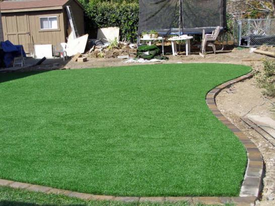 Artificial Grass Photos: Artificial Grass Carpet Otisville, Michigan Home And Garden, Backyard Design