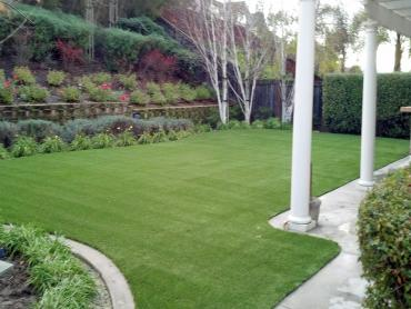 Artificial Grass Photos: Artificial Grass Carpet Quincy, Michigan Cat Playground, Backyard Ideas