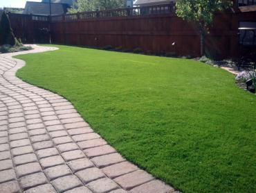 Artificial Grass Photos: Artificial Grass Carpet Walled Lake, Michigan Lawns, Small Backyard Ideas