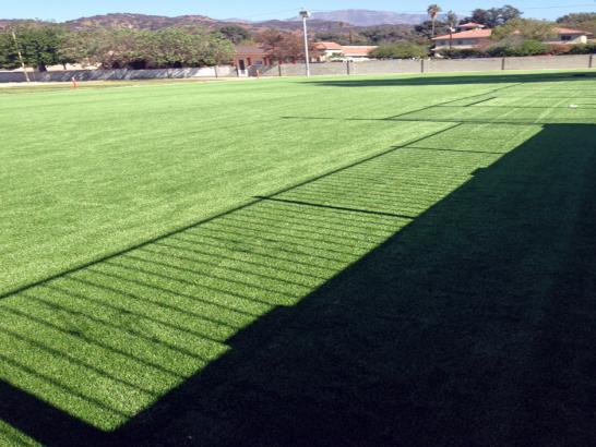Artificial Grass Photos: Artificial Grass Carpet Waterford, Michigan Sports Athority