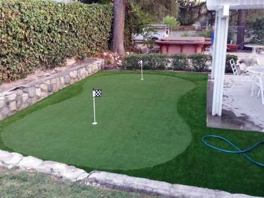 Artificial Grass Photos: Artificial Grass Hersey, Michigan Putting Green Turf, Backyard Design