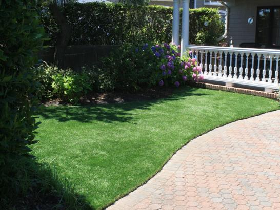 Artificial Grass Photos: Artificial Grass Tustin, Michigan Drainage, Front Yard Landscaping
