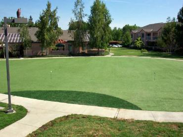 Artificial Grass Photos: Artificial Lawn Mendon, Michigan Indoor Putting Greens, Commercial Landscape