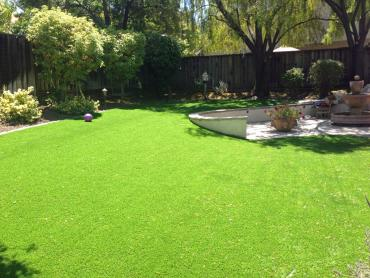 Artificial Grass Photos: Artificial Lawn Richmond, Michigan Paver Patio, Backyard Design