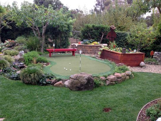 Artificial Grass Photos: Artificial Turf Center Line, Michigan Indoor Putting Greens, Backyard Makeover