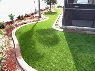 Artificial Grass Photos: Artificial Turf Cost Albion, Michigan Landscaping Business, Backyard Landscape Ideas