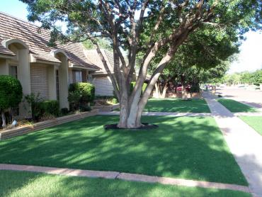 Artificial Turf Cost Carsonville, Michigan Landscaping Business, Front Yard artificial grass