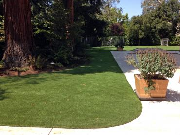 Artificial Grass Photos: Artificial Turf Cost Clifford, Michigan Dog Grass, Front Yard Landscape Ideas