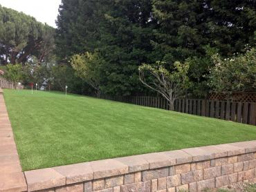 Artificial Grass Photos: Artificial Turf Cost Edwardsburg, Michigan Putting Green Grass, Backyard Design
