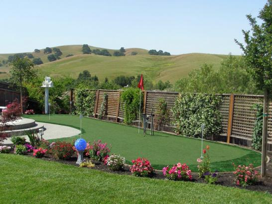 Artificial Grass Photos: Artificial Turf Cost Grand Blanc, Michigan Landscaping Business, Small Backyard Ideas