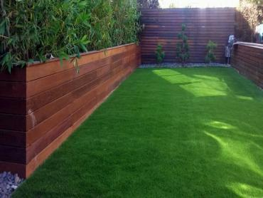 Artificial Grass Photos: Artificial Turf Cost Hillsdale, Michigan Design Ideas, Backyard Design