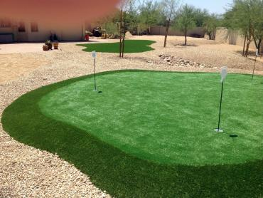 Artificial Grass Photos: Artificial Turf Cost Rose City, Michigan Indoor Putting Green, Backyard Landscaping Ideas