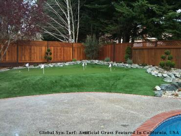 Artificial Turf Cost Wyandotte, Michigan Design Ideas, Backyard Ideas artificial grass
