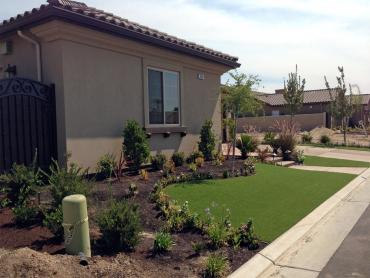 Artificial Grass Photos: Artificial Turf Elkton, Michigan Lawns, Front Yard