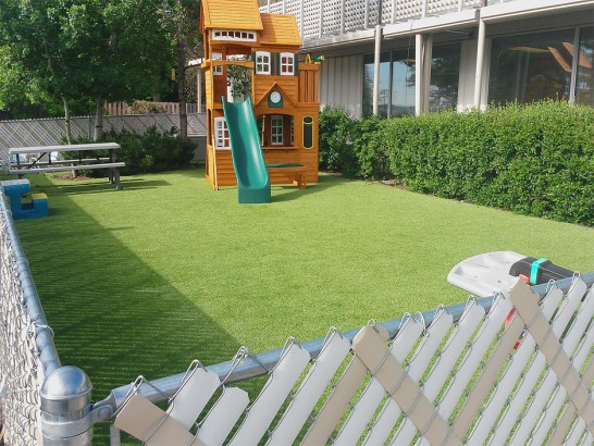 Artificial Grass Photos: Artificial Turf Installation Allen, Michigan Playground Safety, Backyard Design