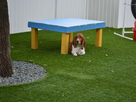 Artificial Grass Photos: Artificial Turf Installation Caseville, Michigan Artificial Turf For Dogs,  Dog Kennels