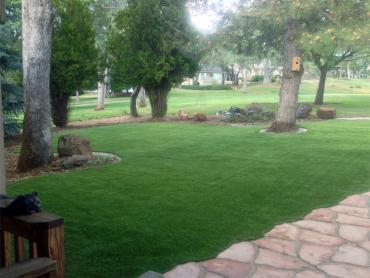 Artificial Grass Photos: Artificial Turf Installation Mason, Michigan Landscape Ideas, Landscaping Ideas For Front Yard