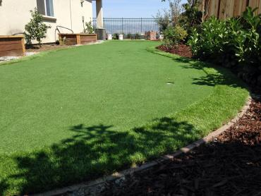 Artificial Grass Photos: Artificial Turf Port Huron, Michigan Lawns, Backyard Designs