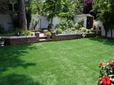 Artificial Grass Photos: Artificial Turf Saint Johns, Michigan Home And Garden, Backyard