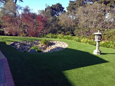 Best Artificial Grass Grosse Ile, Michigan Landscaping, Backyard artificial grass