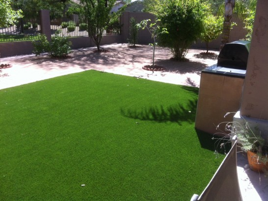 Artificial Grass Photos: Fake Grass Carpet Bad Axe, Michigan Dog Run, Backyard Design