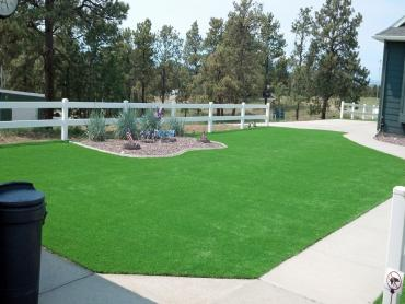 Artificial Grass Photos: Fake Grass Carpet Canton, Michigan Roof Top, Front Yard