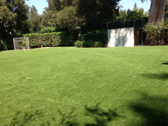 Artificial Grass Photos: Fake Grass Carpet Fruitport, Michigan Sports Athority, Backyard Ideas