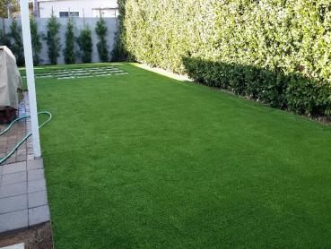 Artificial Grass Photos: Fake Grass Carpet Grand Rapids, Michigan Cat Playground, Backyard Garden Ideas