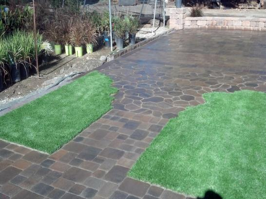 Artificial Grass Photos: Fake Grass Lexington, Michigan Landscape Ideas, Backyard Landscape Ideas