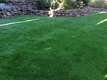 Artificial Grass Photos: Fake Lawn Caseville, Michigan Drainage, Small Backyard Ideas
