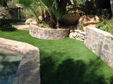 Artificial Grass Photos: Fake Lawn Vandalia, Michigan Landscape Ideas, Small Backyard Ideas