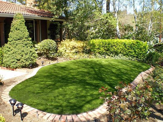 Artificial Grass Photos: Fake Lawn Vernon, Michigan Lawn And Landscape, Backyard Designs