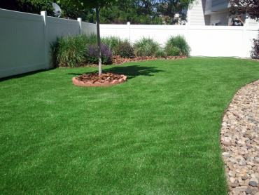 Fake Turf Garden City, Michigan Rooftop, Backyard Landscaping Ideas artificial grass