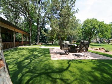 Artificial Grass Photos: Fake Turf Novi, Michigan Landscape Design, Backyard Ideas
