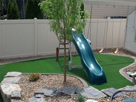 Artificial Grass Photos: Fake Turf Wacousta, Michigan Backyard Playground, Backyard Garden Ideas