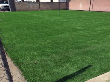 Artificial Grass Photos: Faux Grass Brownlee Park, Michigan Backyard Soccer