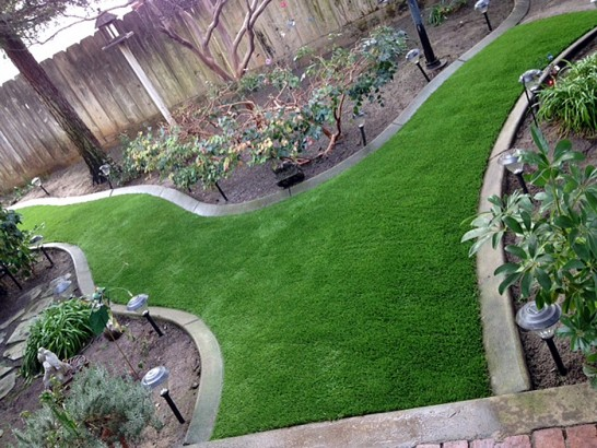 Artificial Grass Photos: Faux Grass Cass City, Michigan Garden Ideas, Backyard