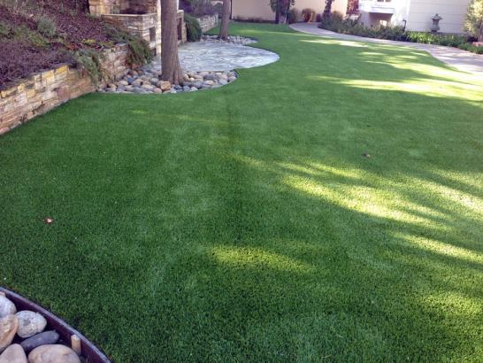 Artificial Grass Photos: Faux Grass Madison Heights, Michigan Hotel For Dogs, Backyard Makeover