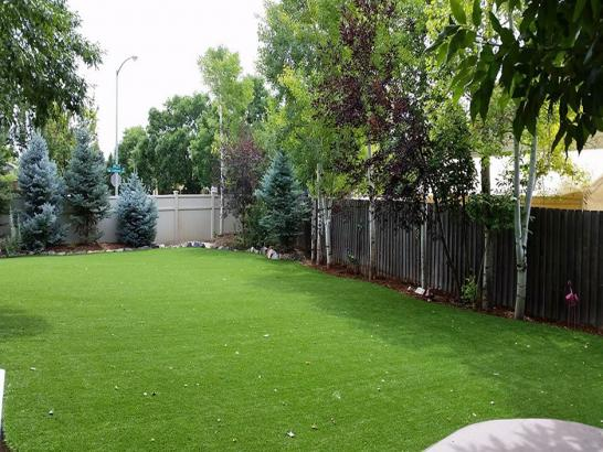 Artificial Grass Photos: Faux Grass Montrose, Michigan Dog Hospital, Backyard Designs