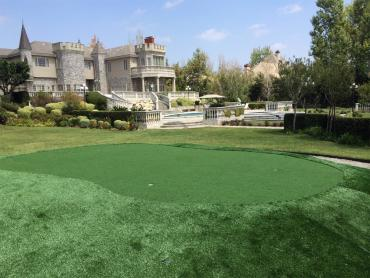 Artificial Grass Photos: Faux Grass Southfield, Michigan Putting Green Turf, Landscaping Ideas For Front Yard