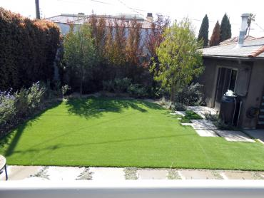 Artificial Grass Photos: Grass Carpet Bronson, Michigan Landscaping Business, Small Backyard Ideas