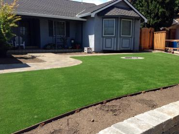 Artificial Grass Photos: Grass Carpet Chelsea, Michigan Lawn And Garden, Landscaping Ideas For Front Yard